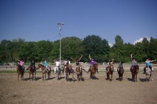 Equitation Découverte et Perfectionnement - Eté / Vienne
