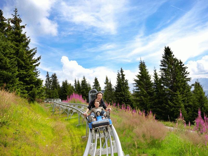 Montagne Nature - Eté / Savoie